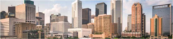 New construction homes near Texas Medical Center & Downtown Houston